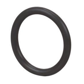 O-Ring-CASE-321183A1